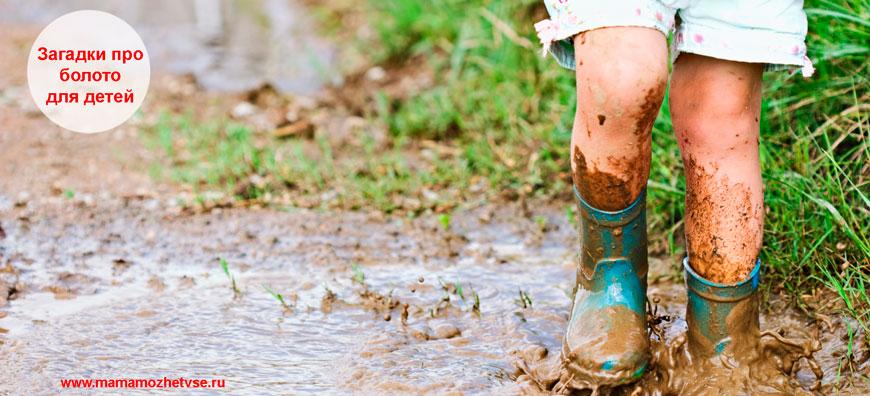 Загадки про болото для детей