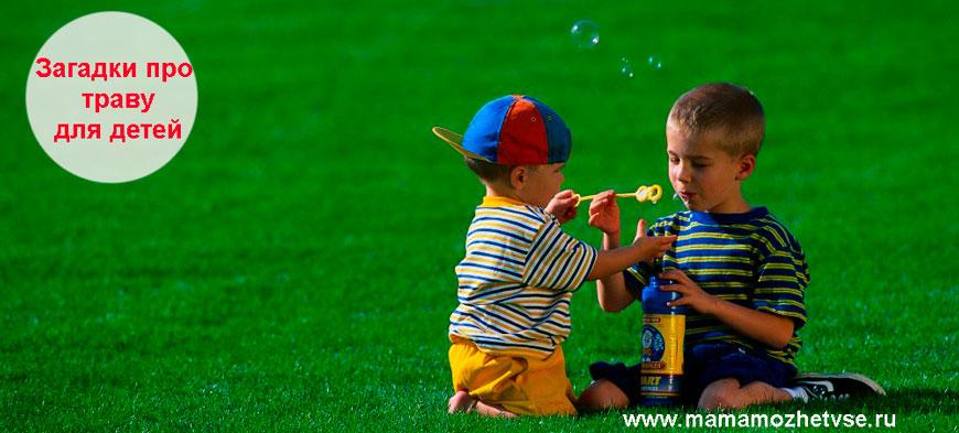 Загадки про траву для детей
