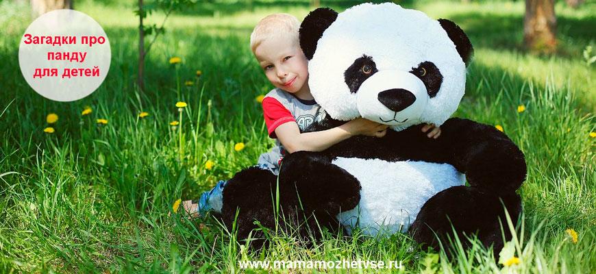 Загадки про панду для детей