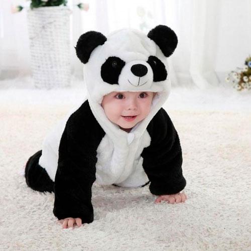 Загадки про панду для детей с ответами