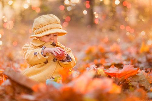 Стихи про осень для детей 5 лет