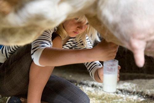 Загадки про молоко для детей с ответами