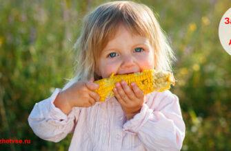 Загадки про кукурузу для детей