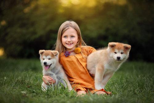 Загадки про щенка для детей с ответами