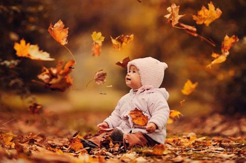 Красивые стихи про золотую осень для детей 5-7 лет