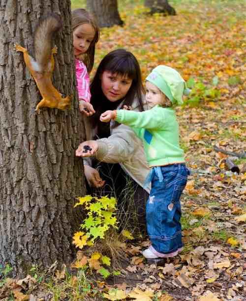 прогулки детей в парке
