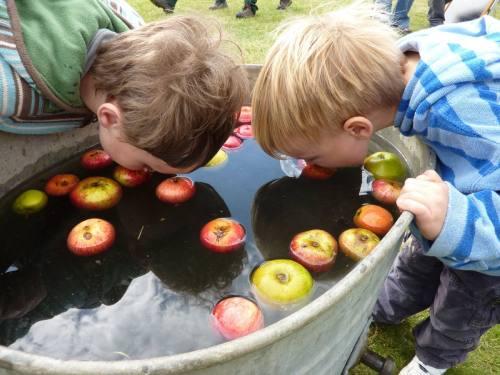 осенние занятия яблочный конкурс_1