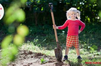 Загадки про лопату для детей