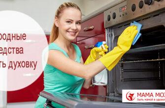отмыть духовку народными средствами