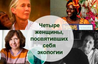 Четыре женщины, посвятивших себя экологии 1