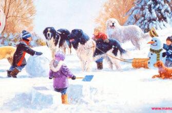 Стихи про зиму для детей 4-5