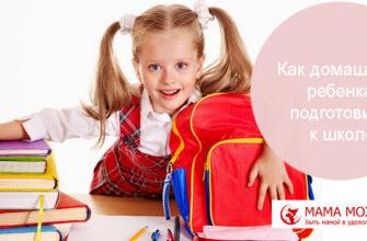 Как домашнего ребенка подготовить к школе