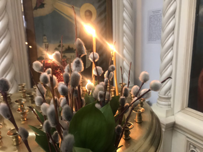 вербное воскресенье праздник история для детей