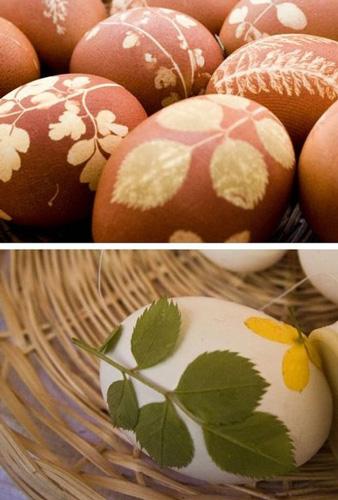 Покрасить яйца с помощью луковой шелухи и листьев