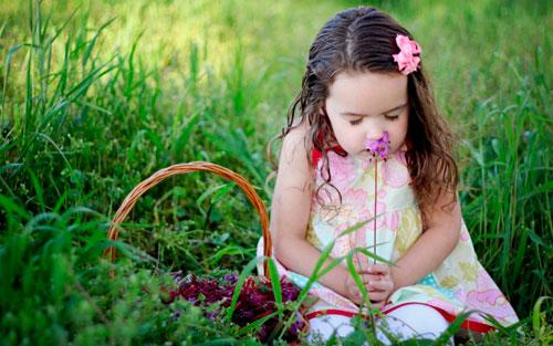 Стихи про весенние цветы для детей: фиалки