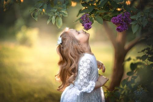 Стихи про весенние цветы для детей: сирень