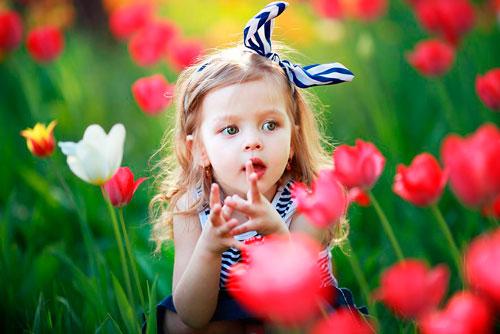 Стихи про весенние цветы для детей: тюльпаны