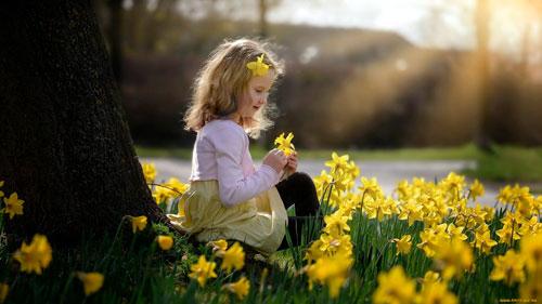 Стихи про весенние цветы для детей: нарцысы