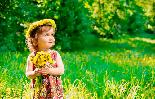 Стихи про весенние цветы для детей: одуванчик
