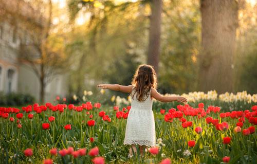 Красивые стихи про весенние цветы