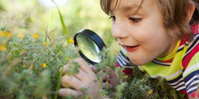 Чему можно научиться у детей дошкольников