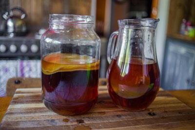 в чем польза чайного гриба для организма