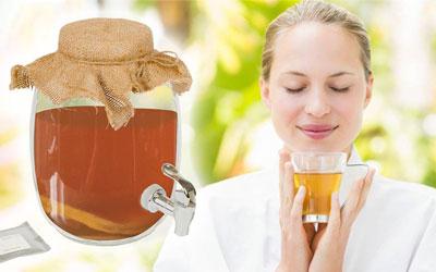 чайный гриб уход и приготовление