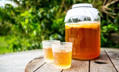 чайный гриб приготовление на 3 литра и уход