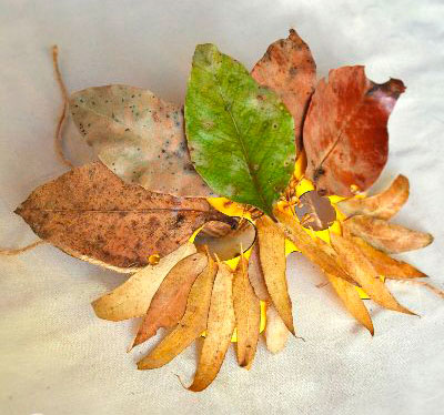 поделка в сад из осенних листьев своими руками 5