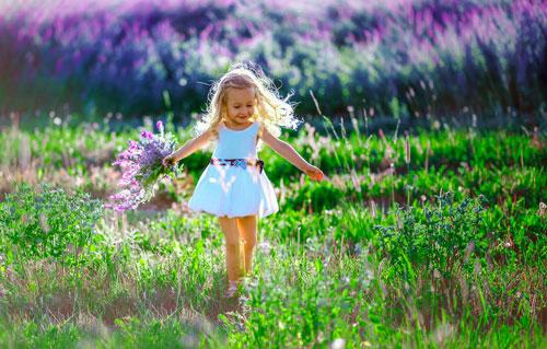 Загадки про летние цветы