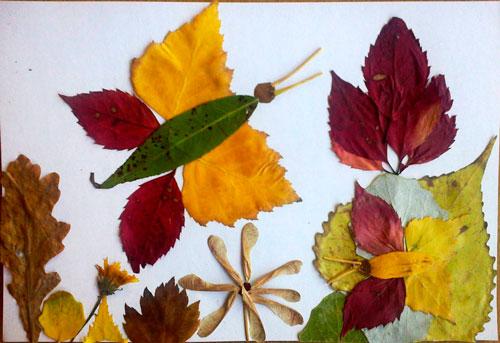 осенняя поделка бабочка из листьев в садик