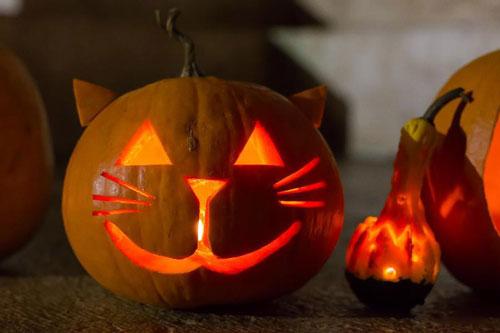 сделать поделку поделку из тыквы на хэллоуин