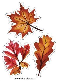 осенние листья из бумаги трафарет 3