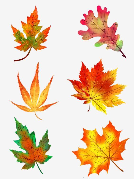 осенние листья из бумаги трафарет 12