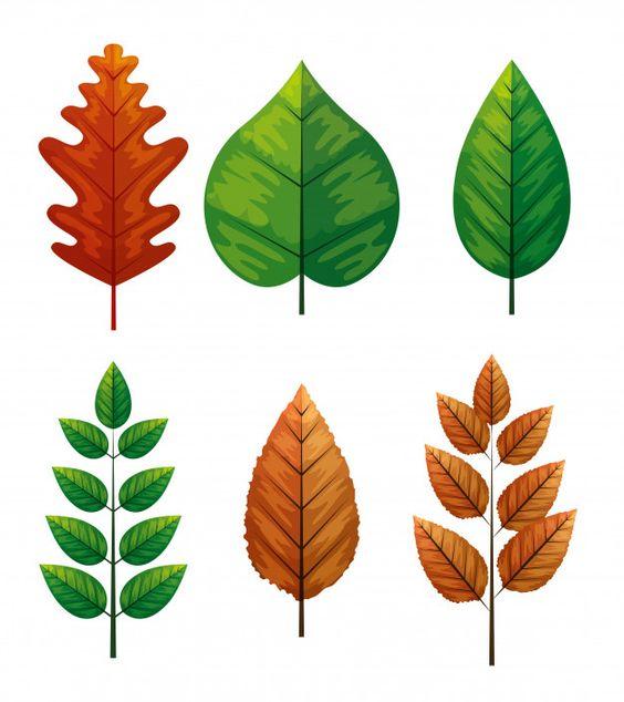 осенние листья из бумаги трафарет 7