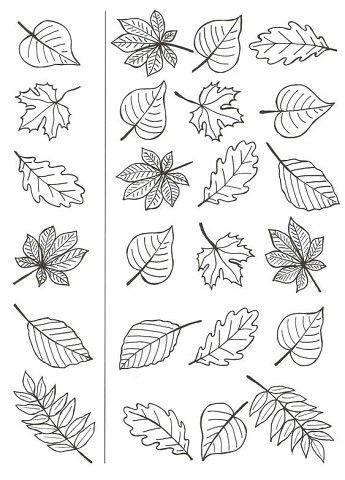 осенние листья из бумаги трафарет 2