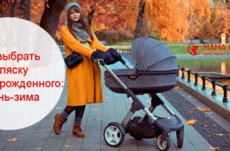коляска для новорожденного осенью