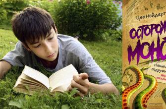 Обзор книги «Осторожно, монстры!» 2