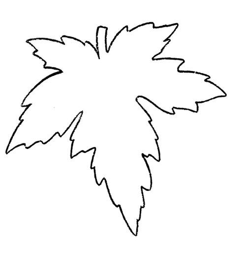 осенние листья из бумаги для оформления