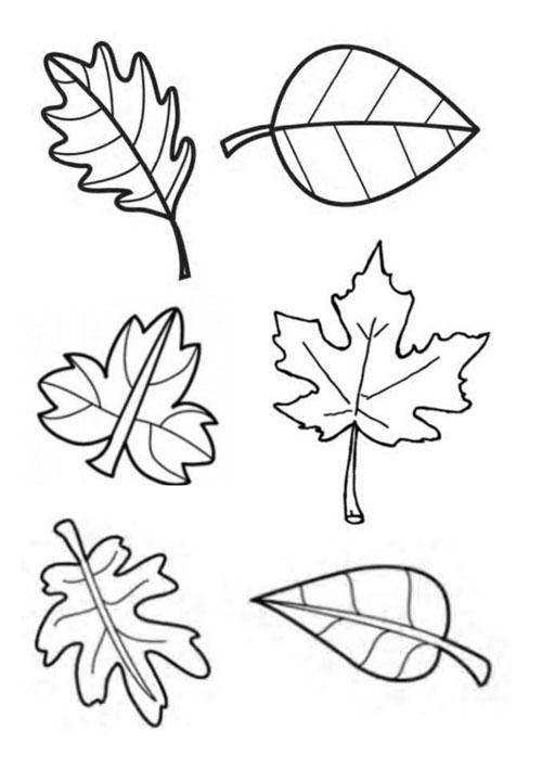 осенние листья из бумаги для оформления 2