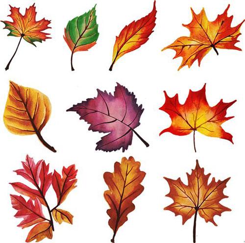 осенние листья для вырезания из бумаги 20