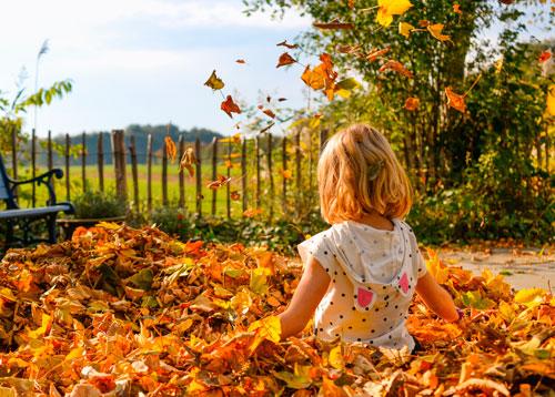 Короткие и красивые стихи про осень для детей 5-6 лет