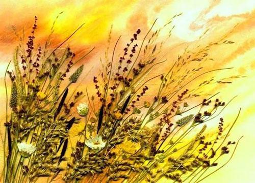 картины из листьев и цветов своими руками для детского сада 2
