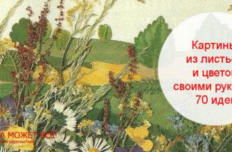 прессованная флористика картины из цветов и листьев