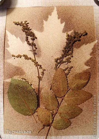 картины из листьев и цветов своими руками 3