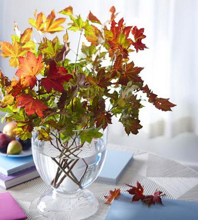 осенний букет листья рисунок