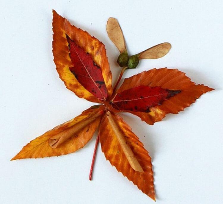 Поделки из листьев на тему осени средняя группа