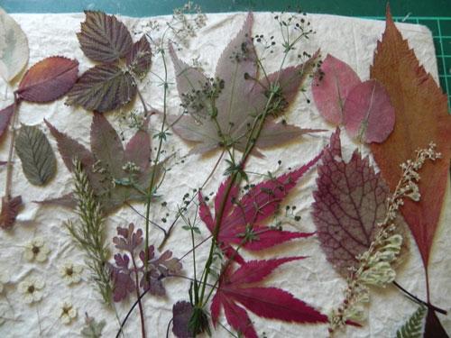 детские поделки +из листьев на тему осень